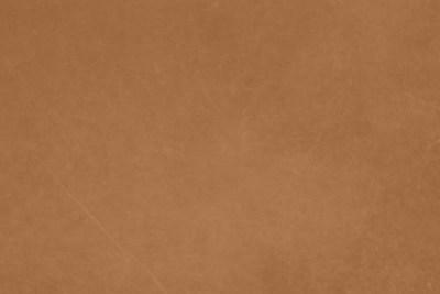 dunes-camel45
